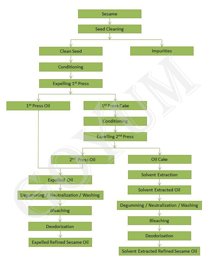 sesame seed-process flowchart
