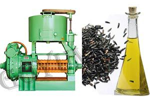 Nyjer, Niger, Noug or Thistle Seed Oil Extraction Machines & Cost
