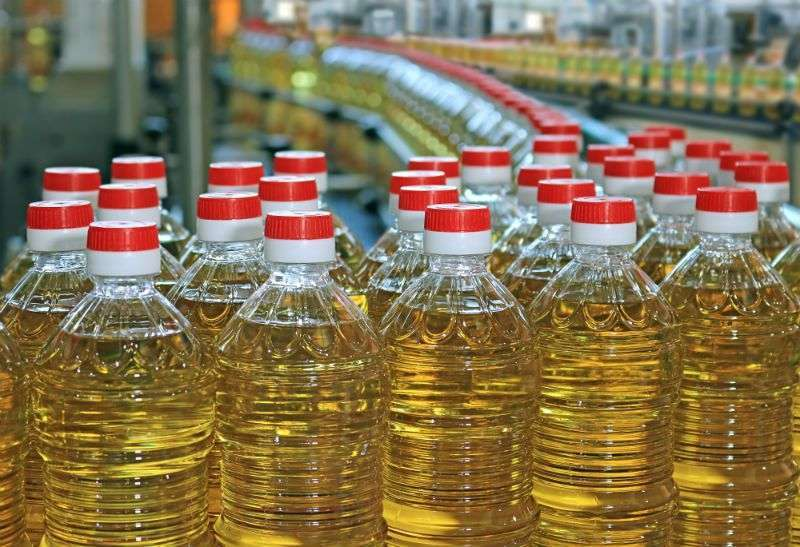 How to Setup Complete Niger Seed Oil Mill Plant