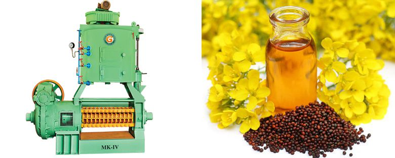 mustard seed oil expeller